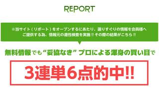 リポート(REPORT)